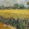 Van Gogh campo con iris e veduta di arles 499