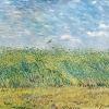 Van Gogh limitare un campo di grano