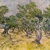 Van Gogh oliveto con cielo azzurro