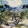 Van Gogh oliveto con nuvola bianca