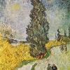 Van Gogh strada con cipresso sotto un cielo stellato