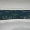 le-ninfee-di-monet-museo-de-lorangerie-3