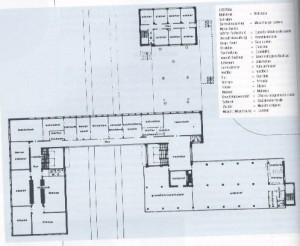 Bauhause pianta